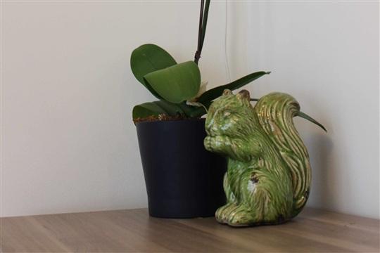 Wood Land Whimsy DIY Terrarium Mobile