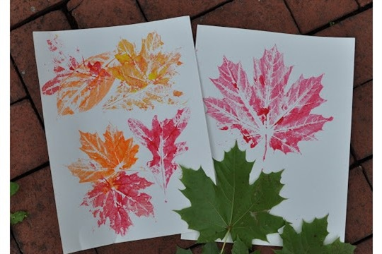Fall Leaf Prints