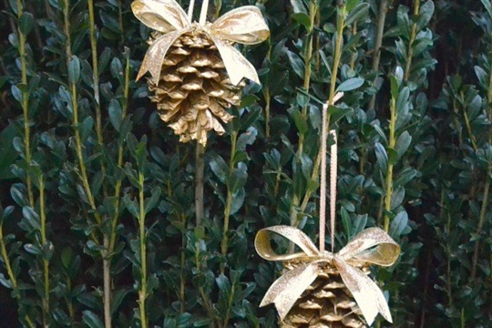 Simple DIY Gold Pinecone Ornaments Sweet Tea & Saving Grace