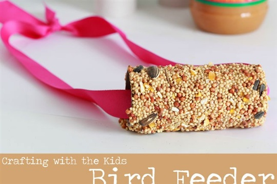 Winter Bird Feeder Craft