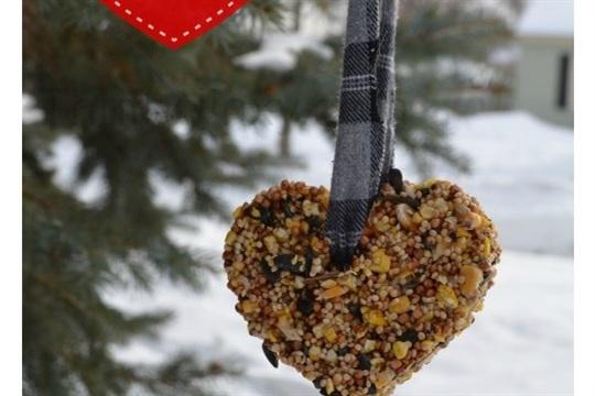 Valentine Bird Feeder Hearts DIY Craft